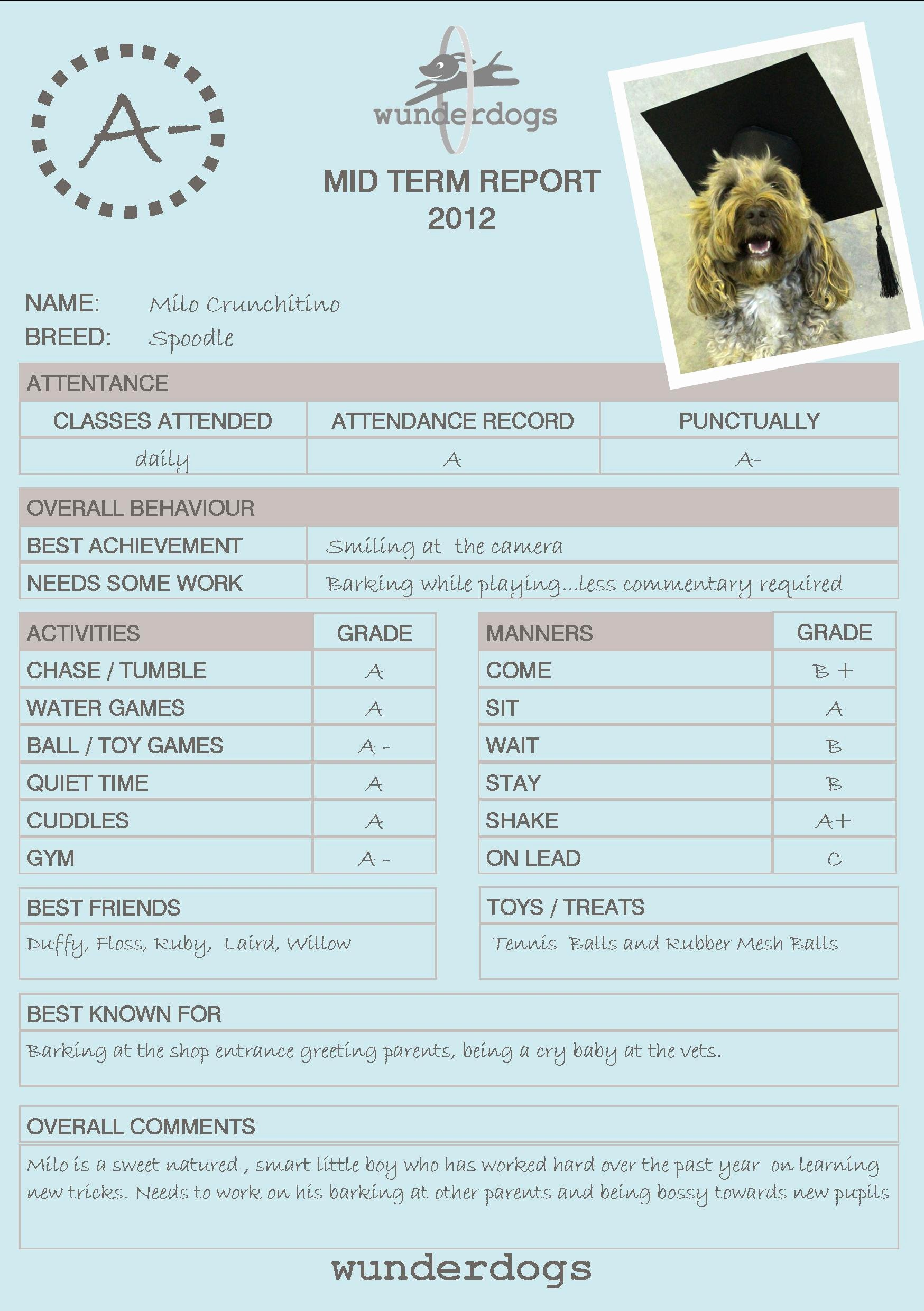Dog Daycare Report Card Elegant 21 Of Doggy Daycare Report Card Template