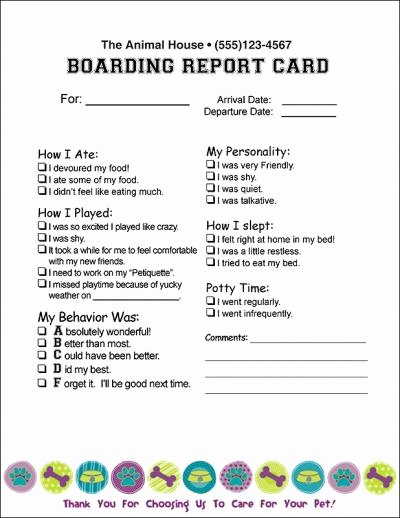 Dog Daycare Report Card Luxury 13 Of Cat Sitting Report Card Template