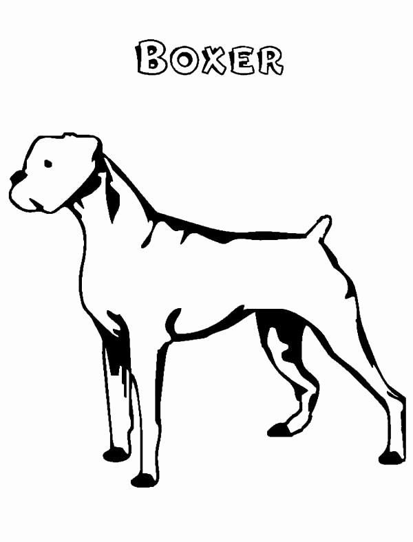 Dog Face Template Awesome Boxer Dog Face Coloring Pages