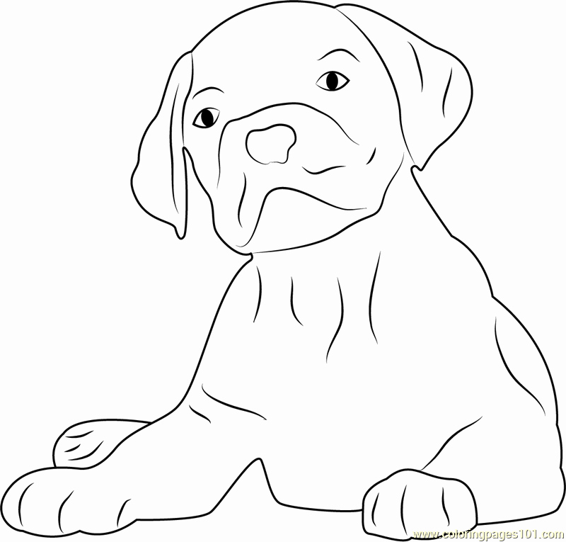 Dog Face Template Elegant Dog Face Coloring Pages Coloring Pages