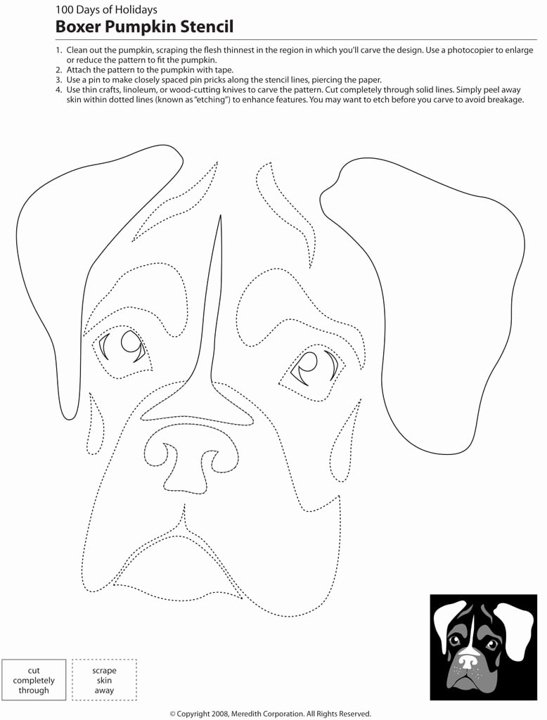 Dog Face Template Lovely Downloadable Dog Breed Pumpkin Stencils