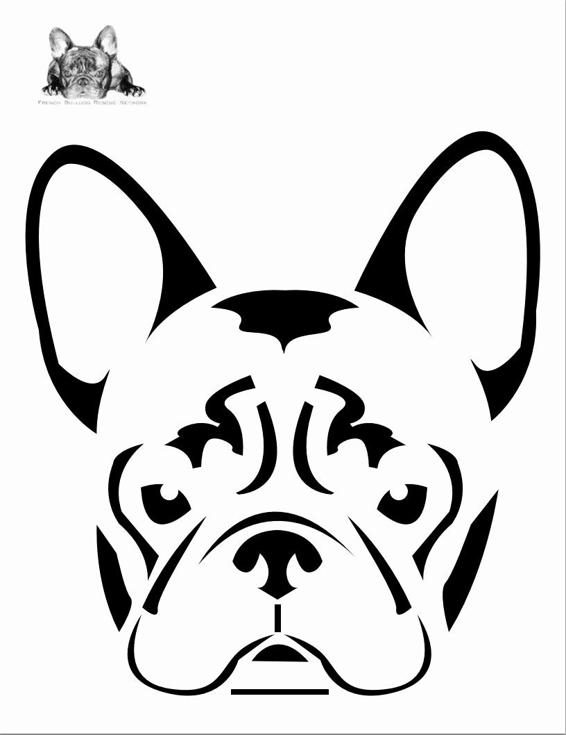 Dog Face Template New Boston Terrier Dog Face Free Halloween Pumpkin Carving