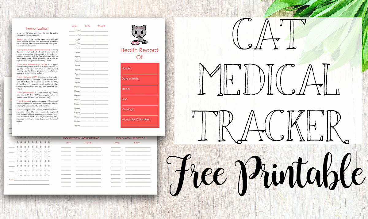 Dog Health Record Template Beautiful Free Printable Medical Record for Dogs Tastefully Eclectic