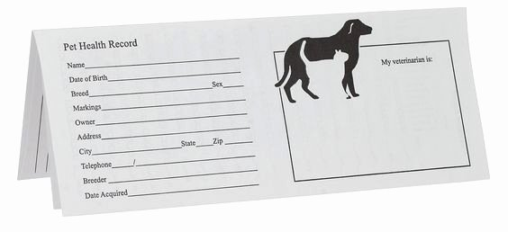 Dog Health Record Template Elegant Printable Puppy Shot Records