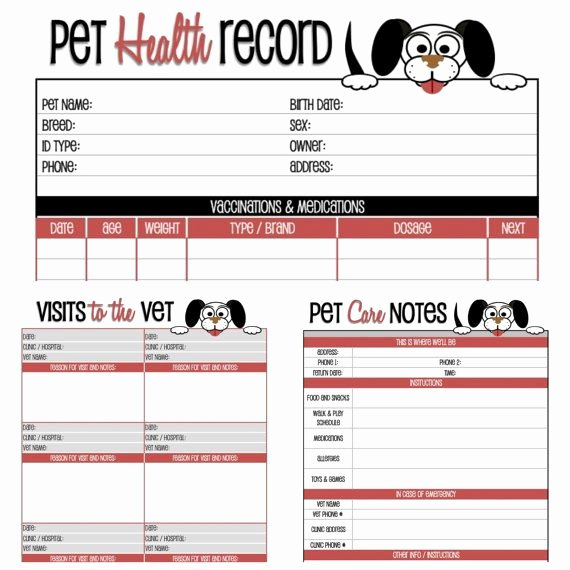 Dog Shot Record Template Awesome Dog Health Record Printable for the Pup