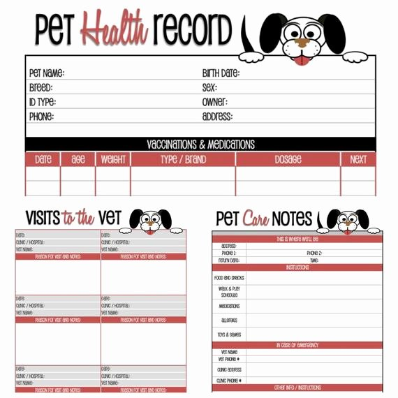 Dog Shot Record Template Elegant Dog Health Record Printable for the Pup