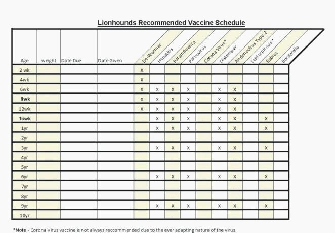 Dog Shot Record Template Fresh Unfor Table Printable Immunization Records