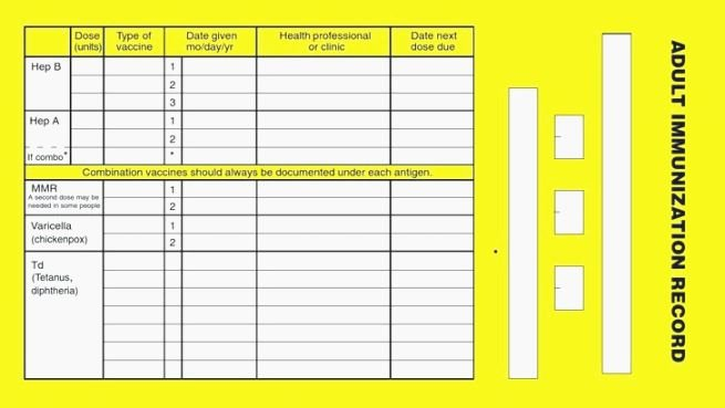 Dog Vaccination Record Template Best Of Best Bright Dog Vaccination Record Printable