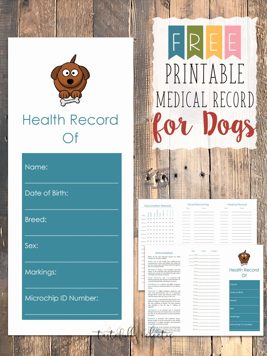 Dog Vaccination Record Template Elegant Free Printable Medical Record for Dogs Tastefully Eclectic