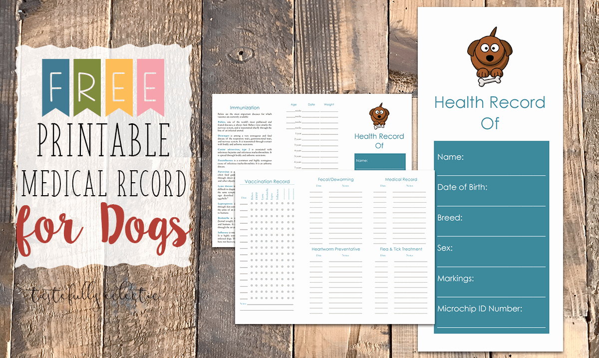Dog Vaccination Record Template Inspirational Free Printable Medical Record for Dogs Tastefully Eclectic