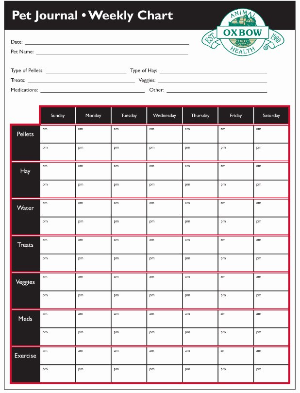 Dog Vaccination Record Template New 9 Best S Of Printable Puppy Vaccination Chart Dogs