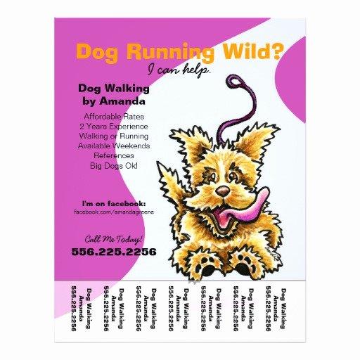Dog Walking Flyer Ideas Awesome Dog Walker Walking Leashed Terrier Tear Sheet Flyer