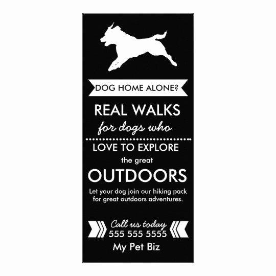 Dog Walking Flyer Ideas Best Of Dog Walker Flyer