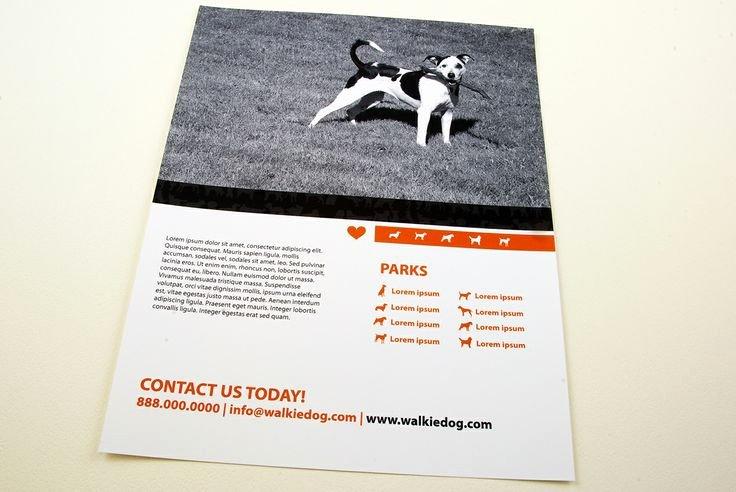 Dog Walking Flyer Ideas Elegant Dog Walking Service Flyer Template