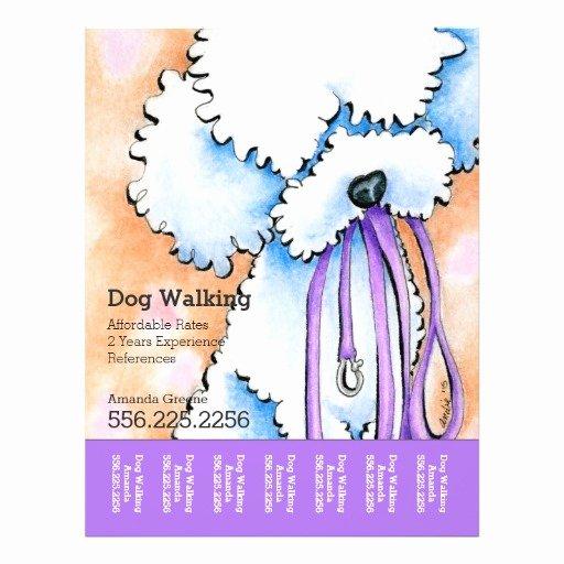 Dog Walking Flyer Ideas Luxury Dog Walker Poodle Purple Personalized Tear Sheet Flyer