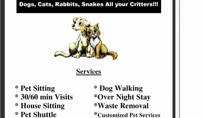 Dog Walking Flyer Ideas New Pet Sitting Flyer
