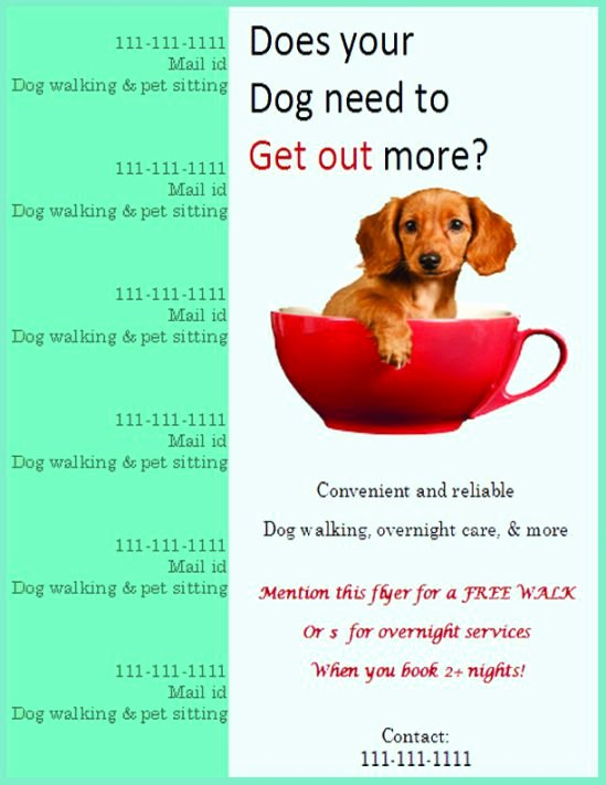 Dog Walking Flyer Ideas Unique 25 Dog Walking Flyers for Small Dog Sitting Businesses