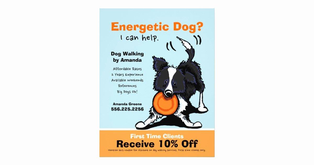 Dog Walking Flyer Ideas Unique Dog Walker Walking Ad Coupon Border Collie Flyer