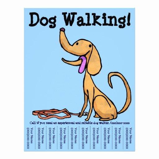 Dog Walking Flyer Template Fresh Dog Walking Flyer