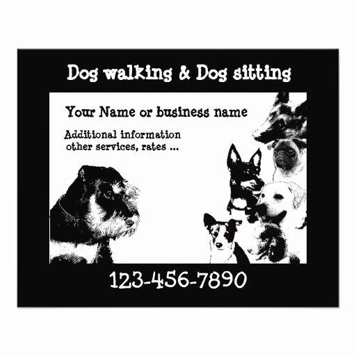 Dog Walking Flyer Template Lovely Dogwalker 3 Flyer