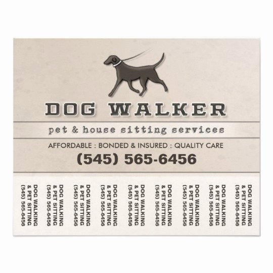 Dog Walking Flyer Template Luxury Dog Walker & Pet Sitting Tear F Flyer 5 6 X 4 5