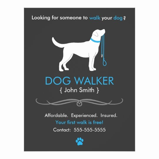 Dog Walking Flyer Template New Dog Walker Walking Business Flyer Template