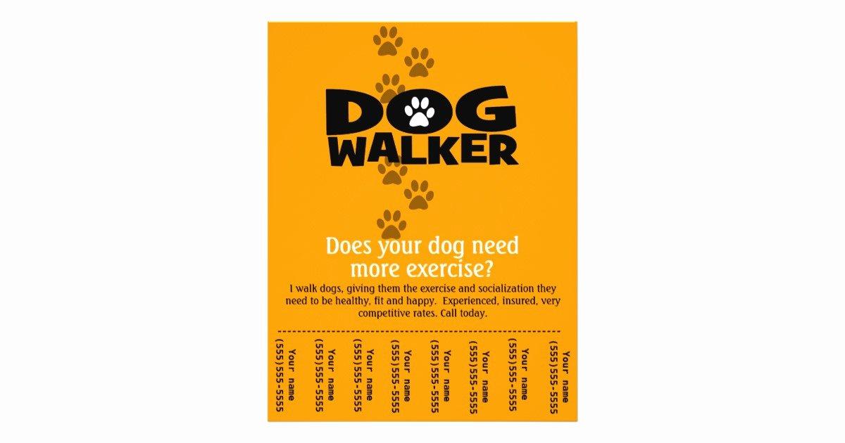 Dog Walking Flyer Template Unique Free Dog Walking Flyer Template