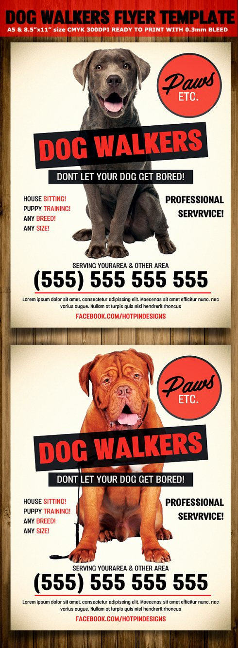 Dog Walking Flyer Template Unique Modern