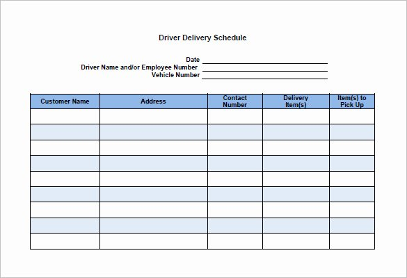 Driver Trip Sheet Template Luxury 13 Delivery Schedule Templates Doc Pdf Excel