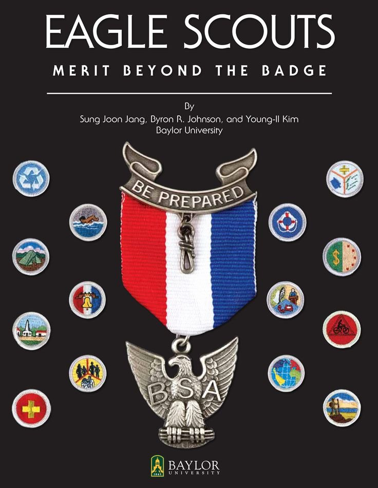 Eagle Scout Ambition Statement Example Best Of 17 Best Ideas About Eagle Scout Badge On Pinterest