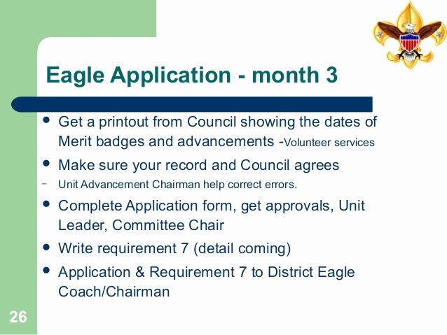 Eagle Scout Ambition Statement Example Lovely Life toeagletraining35pages2014