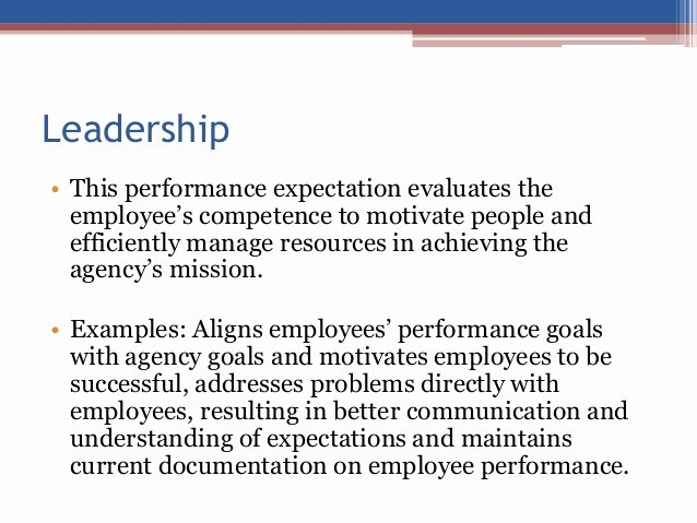 Employee Expectations Template Inspirational Idaho State Employee Expectations and Rating Levels