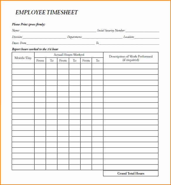 Employee Payroll Ledger Template Best Of 12 Employee Payroll Record form