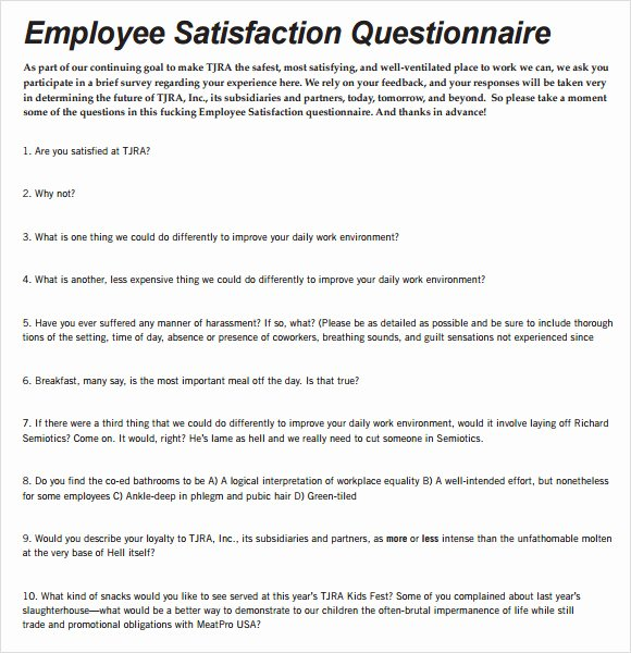 Employee Satisfaction Survey Questionnaire Doc Awesome Employee Satisfaction Survey 9 Download Free Documents