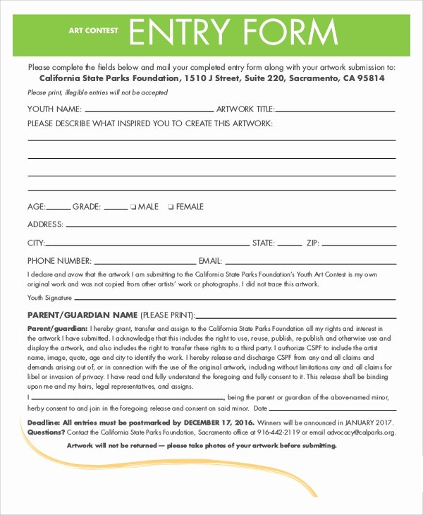 Entry form Template Word Beautiful 7 Sample Contest forms