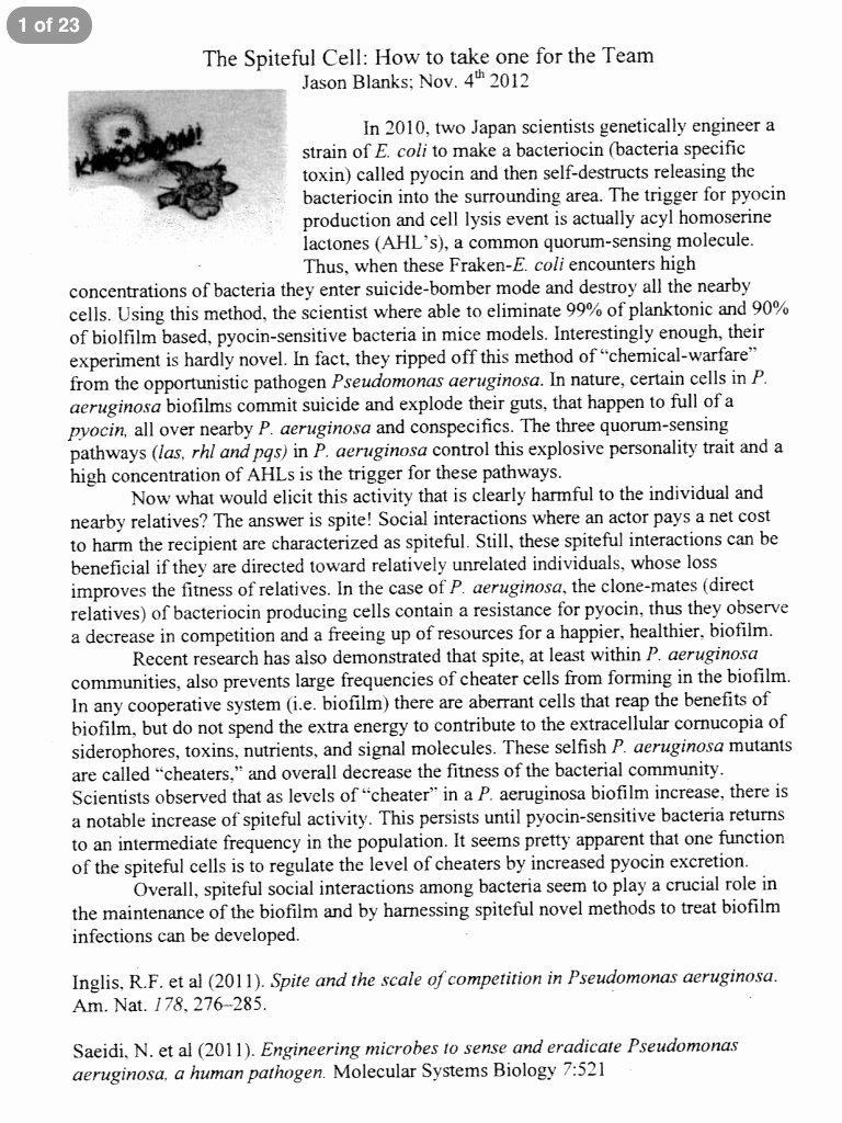 Essay About Cheating In School Luxury College Paper Cheating Birthdayessay X Fc2