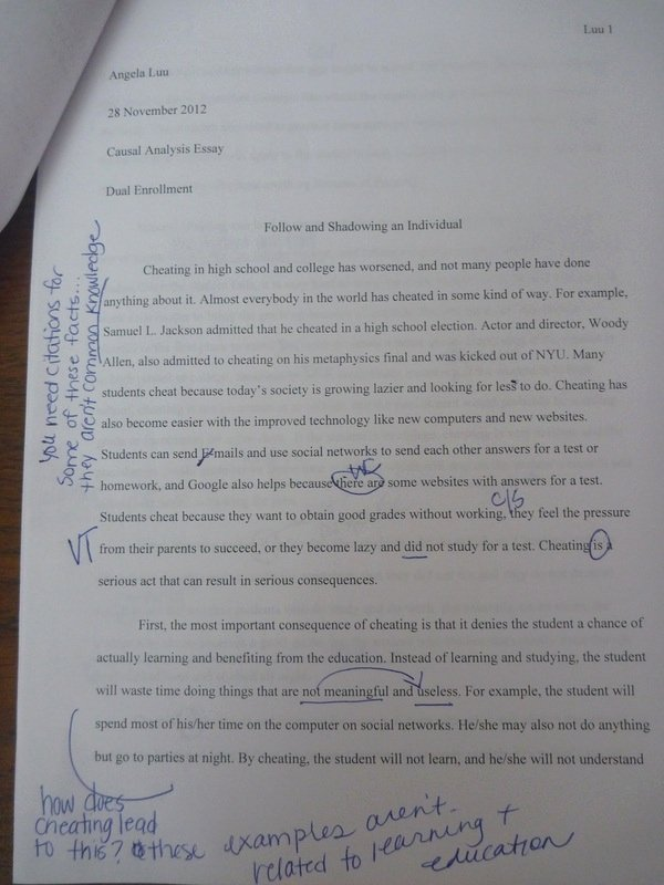 Essay About Cheating In School Unique Cause and Effect Essay