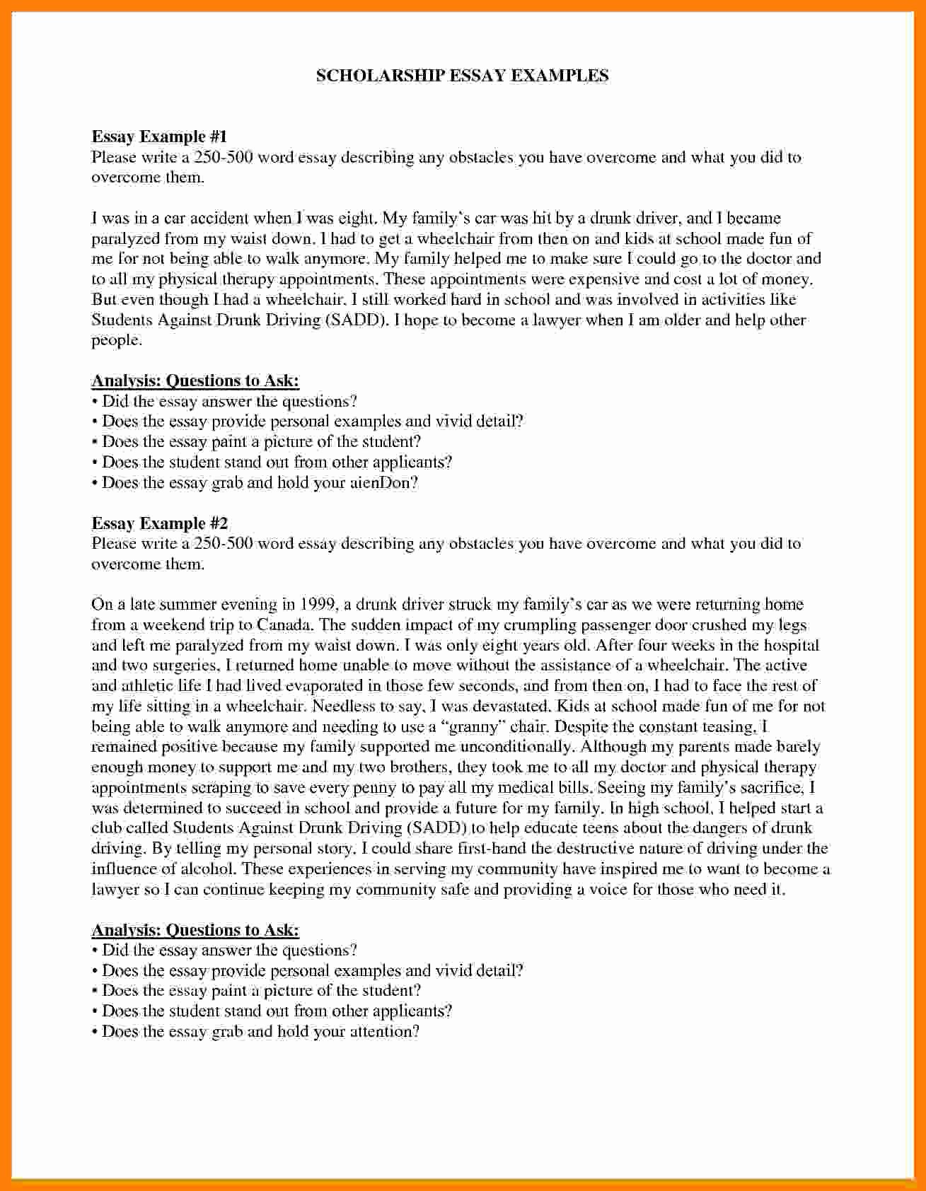 Essays for Scholarship Applications Examples Unique 6 Scholarship Application Essay Example