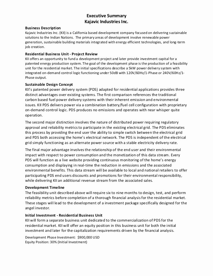 Example Of Book Analysis Lovely Executive Summary Example Kajavic Industries