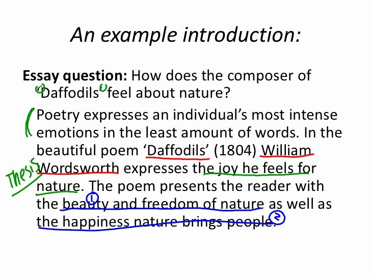 Example Of Poem Analysis Beautiful Poetry Analysis Essay Help thesis Statement for Romeo