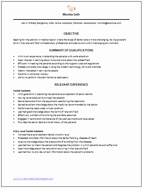 Examples Of Excellent Resumes Awesome Professional Curriculum Vitae Resume Template Sample