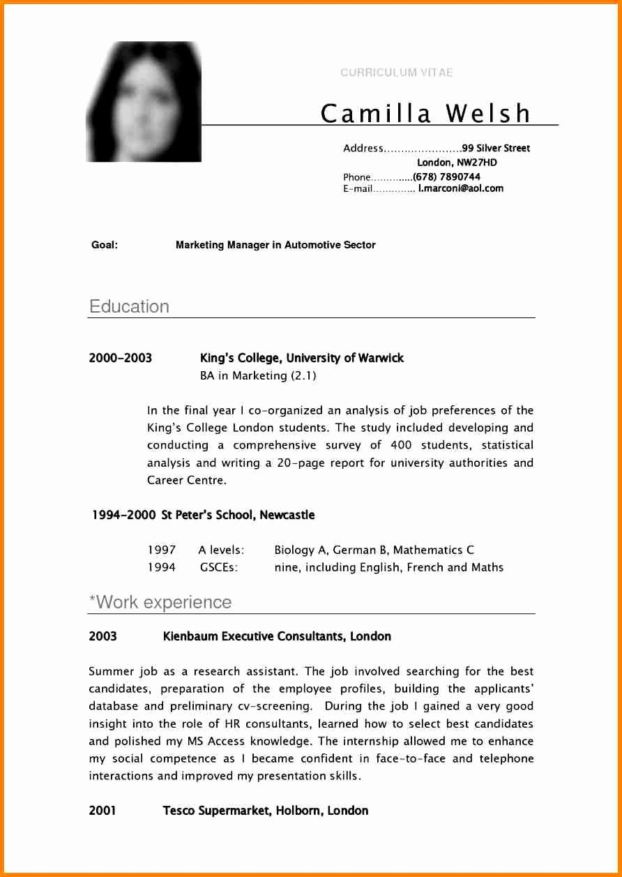 Examples Of Excellent Resumes Elegant 8 English Cv Sample