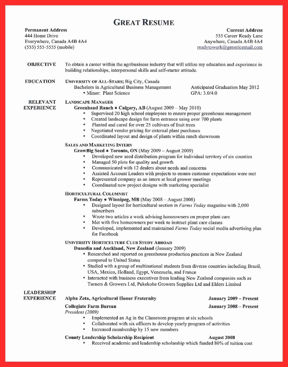 Examples Of Excellent Resumes Luxury Example Great Resume
