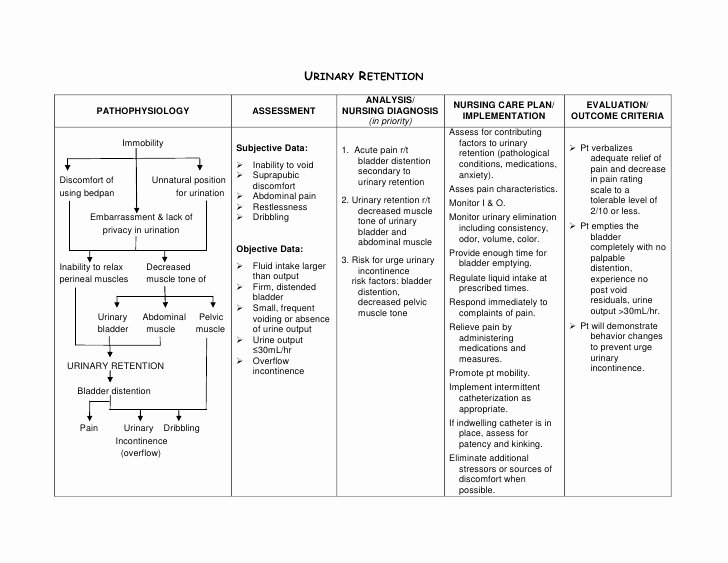 Examples Of Nursing Care Plans for Constipation Luxury Urinary Retention