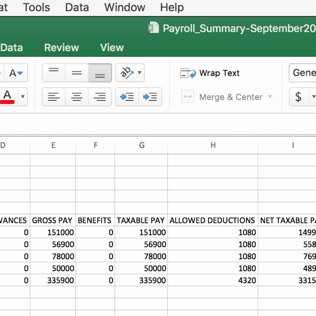 Excel Payroll Template 2019 Beautiful Payroll Report Template Excel Summary Invoice Templates