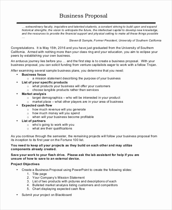 Expansion Plan Template Best Of 17 Sample Business Proposals Doc Pdf