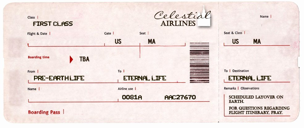 Fake Airline Ticket Generator Luxury Blank Tickets American Airlines