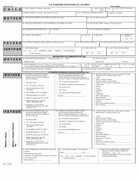 Fake Birth Certificate Template Best Of 15 Birth Certificate Templates Word & Pdf Template Lab