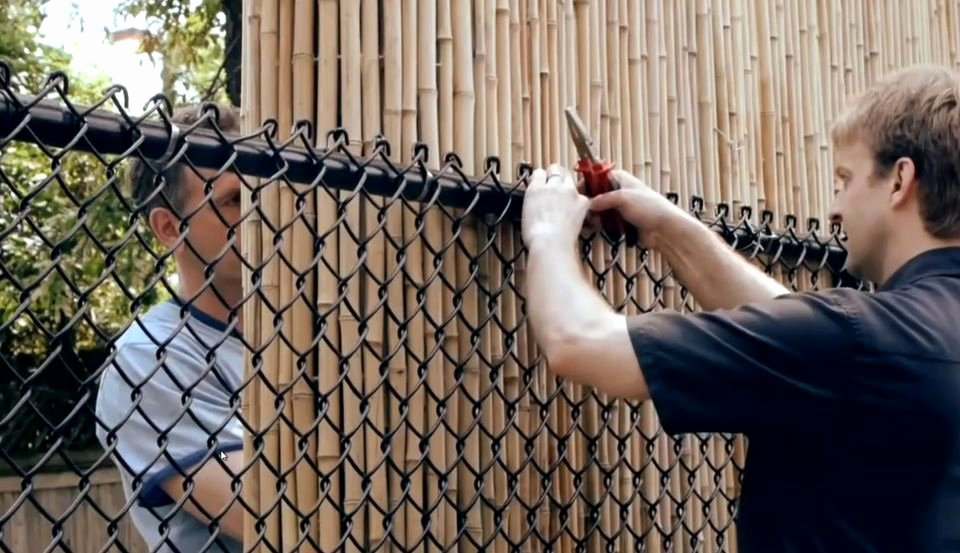 Fence Cup Design Template Fresh Option for Chain Link Fence Covering Ideas
