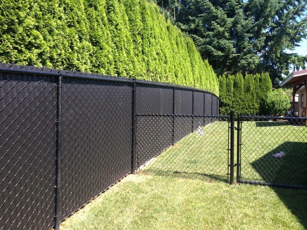 Fence Cup Design Template Lovely Option for Chain Link Fence Covering Ideas